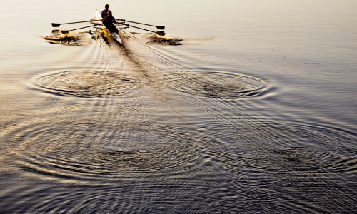 rowing a boat through a golden sunset