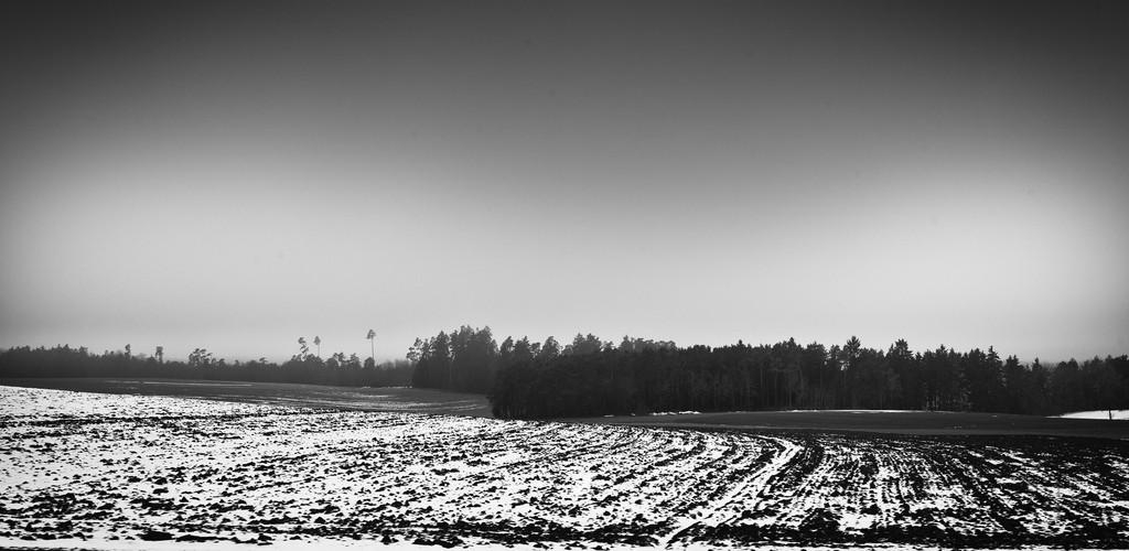 dark farm in winter black and white
