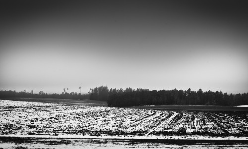 dark farm in winter black and white